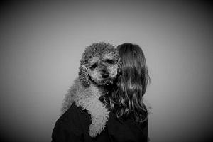 como adoptar un perro como mascota